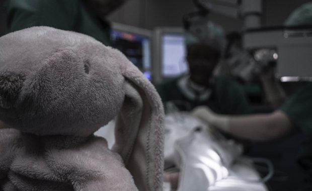 Knuffel olifant - waarom houdt niemand rekening met mij - HJTC blog